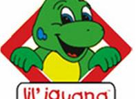 Lil' Iguana