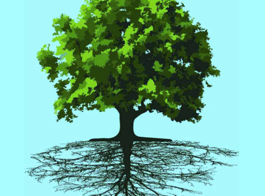 Tracing Your Family Roots